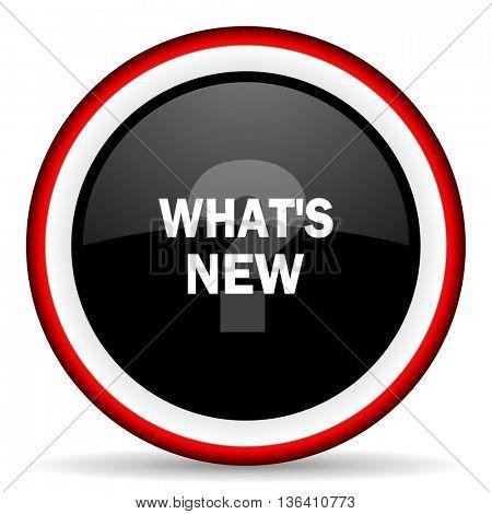 new round glossy icon, modern design web element