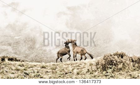 Two young horses playing with each other at high mountain in foggy background. Painting style retouching.