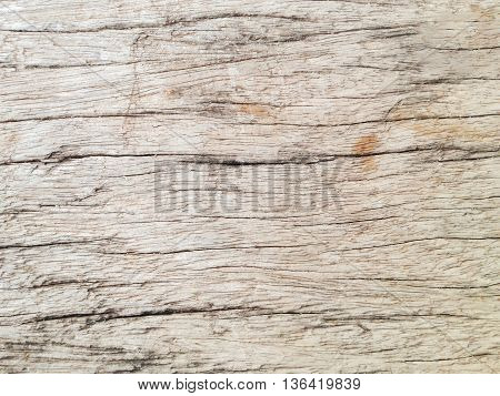 Texture Background Of Old Wood Or Log Surface