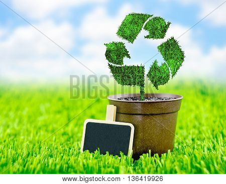 Blackboard And Flowerpot With Recycle Sign Made From Grass On Green Field And Blue Sky,eco Concept