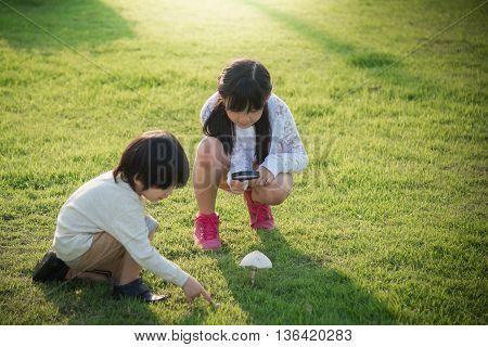 Cute asian children picking mushroom in the park