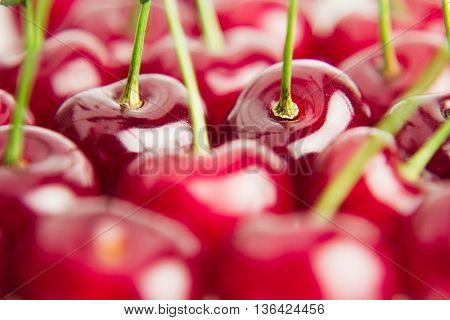 Cherry background. Pattern of fresh cherries with tails. Macro. Food background.