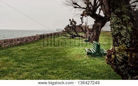 Watching The Sea Iii