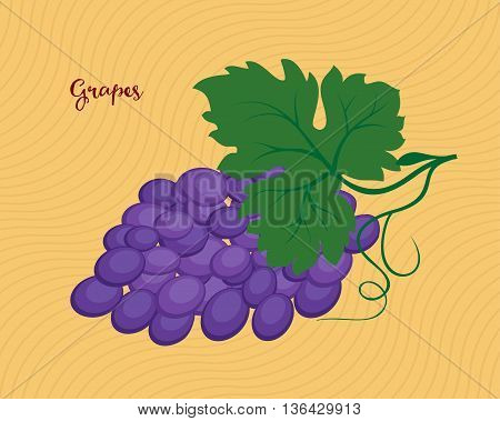 Bunch of purple grapes with leaves. Raster illustration