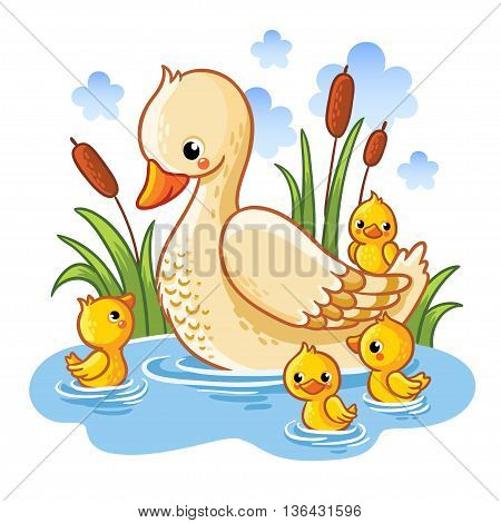 Vector illustration of a duck and ducklings. Mother duck swims in the lake with small ducklings around grass. Farm bird duck in cartoon style.