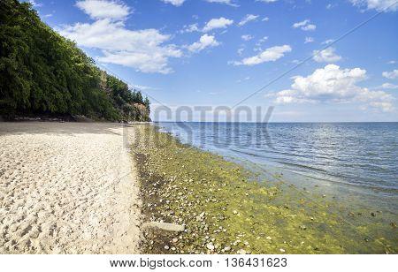 Baltic sea cliff - Poland Gdynia Orlowo
