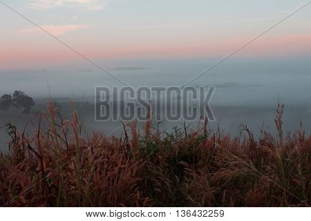 Mist on the mountain.mist, forest, landscape, burma, sunset, nature,
