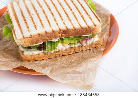 Grilled sandwhich on a plate on a white background