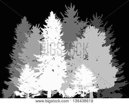 illustration with grey forest isolated on black background
