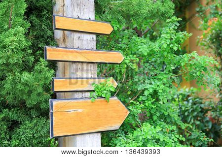 Empty wooden sign boards pointing to the same direction in green forest trail background