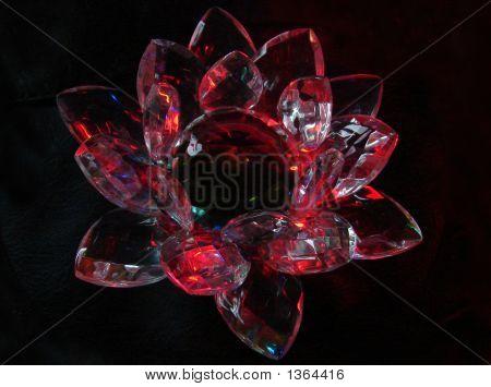 A Crimson Crystal Lotus