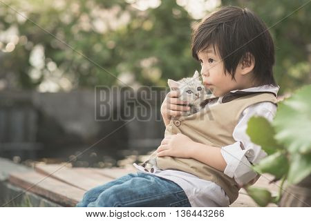 Cute Asian boy kissing american short hair kitten with sunshine in the park