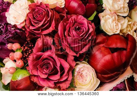 Pink and red flowers background. close up