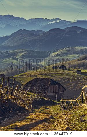 Romanian Rural Scene