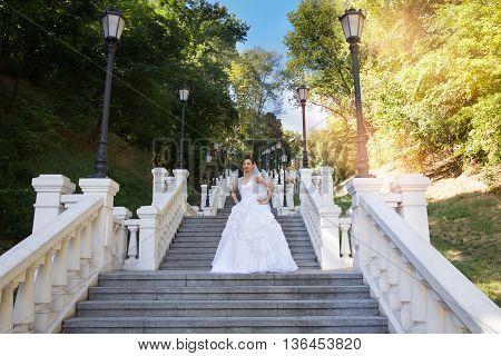 Brunette bride in a beautiful white dress