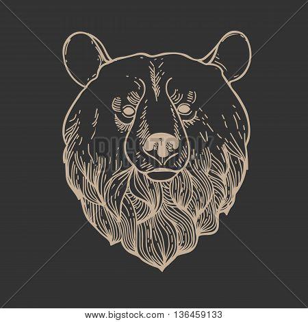 Engrave isolated vector bear.Bear Head Logo Mascot Emblem.Hand Drawn Graphic Bear.