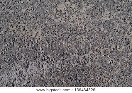 Texture of road surface made of asphalt concrete with a net of cracks