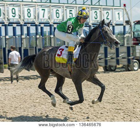 Horse race for the prize Ogranichitelni in Pyatigorsk,Caucasus,Russia.