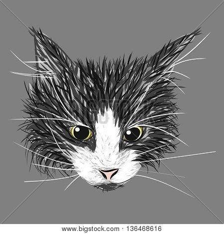 Black, gray and white cat sketch. Hand drawn