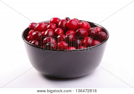 Fresh Wild Cranberries. Studio Shoot.