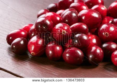 Shiny Fresh Wild Cranberries. Studio Shoot.
