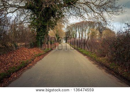 Road in rural Britain in winter