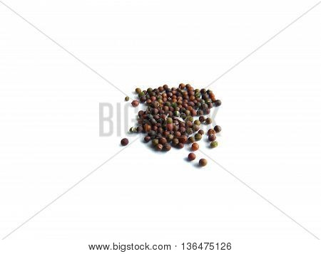 Several multi-colored small mustard seeds on a white background.