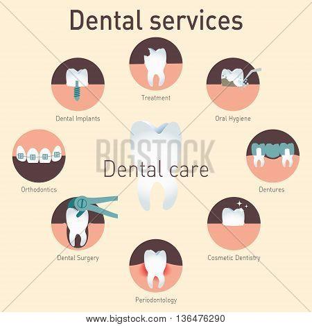 Types dental services. Medical dental vector infografics.