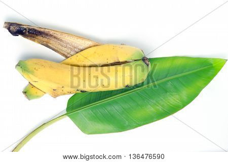 Banana (Other names are Musa banana acuminata Musa banana balbisiana and Musa x paradisiaca) leaf and peel isolated on white background