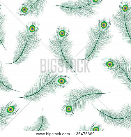 Peacock feather seamless texture peacock feathers background. Feathers of a peacock wallpaper. Vector illustration.