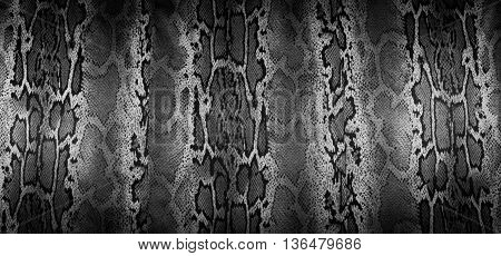 texture of print fabric stripes snake for background closeup