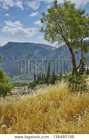 Panoramic view of Ancient Greek archaeological site of Delphi,Central Greece