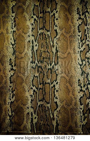texture of fabric stripes snake leather for background