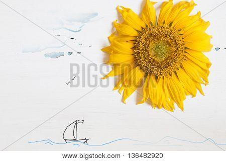 sunflower on a white wooden background - summer idea