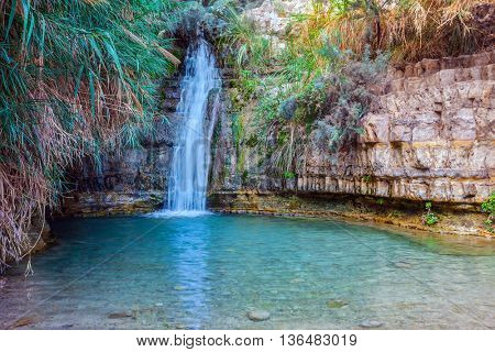 The beautiful waterfall and small deep lake with emerald water. Walk in the Ein Gedi - national park of Israel