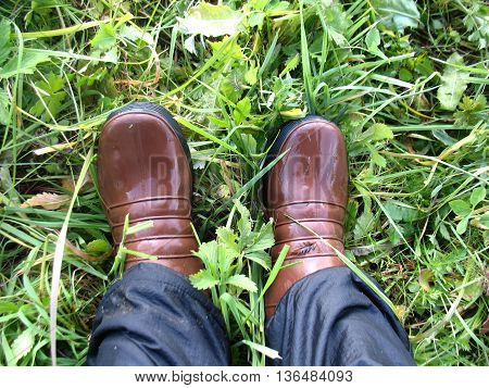 legs in wet boots on grass after rain
