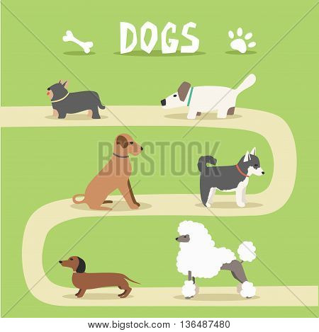 Set of dogs. Cartoon vector illustration. Park. Sale of purebred dogs. Isolated background. Flat style. Domesticated dogs