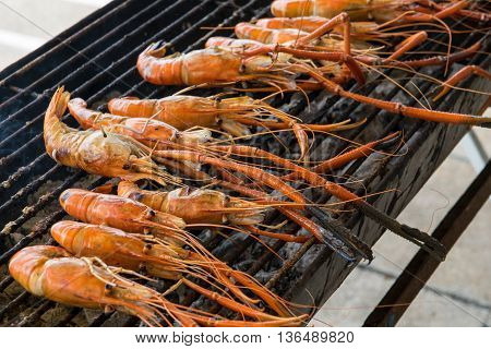 Grilled prawns on the grill. shrimp, grilled, grill,