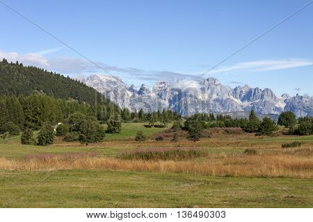 the Dolomites of Brenta from Viote on Mount bondone