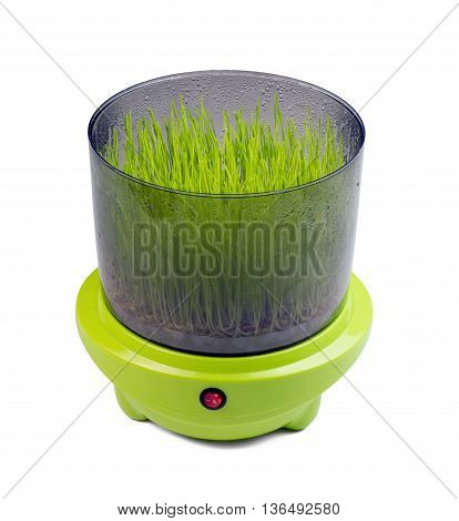 Machine for automatic sprouting grains and wheat germ, beans, mung bean, barley and other crops isolated on white background