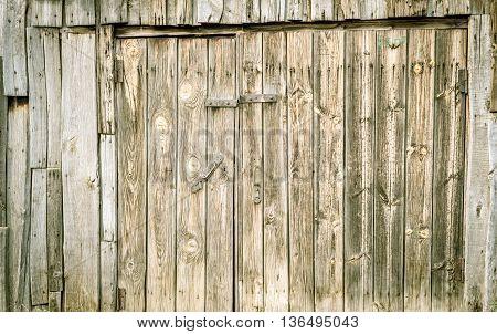 Grunge Wooden Door In Green