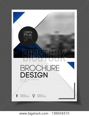 Abstract Business Flyer Design Vector Template In A4 Size. Document Or Book Cover. Annual Report Wit
