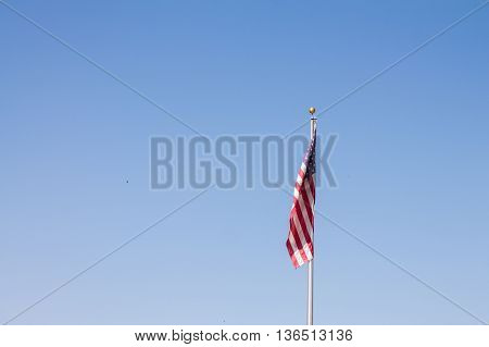 United States of America Flag - Bandeira EUA