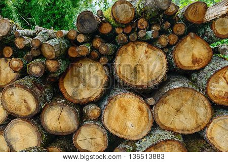 a pile of pieces of wood for heating