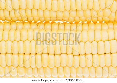 Corn cobs clouseup. Corn grains. Texture. Food background.
