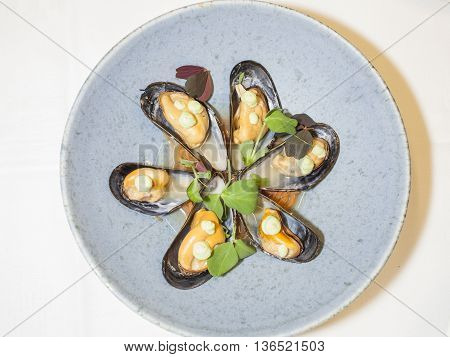 a dish created on the new nordic inspiration