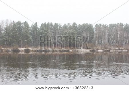 The River and forest in cloudy weather