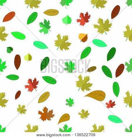 Autumn Leaves  Isolated on White Background. Seamless Different Leaves Pattern