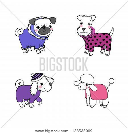 Cute cartoon dogs in winter clothes. Pug, terrier, poodle, setter. Hand drawing isolated objects on white background. Vector illustration.