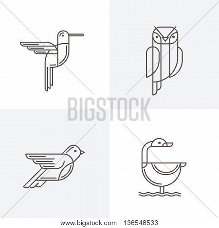 Set Of Vector Line Art Logo With Birds. Outline Illustrations Of Hummingbird, Owl, Pigeon And Swan.